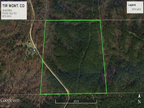 Timberland Investment Land For Sale : Duck Hill : Montgomery County : Mississippi
