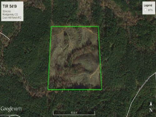 Timberland Investment Montgomery Co : Duck Hill : Montgomery County : Mississippi
