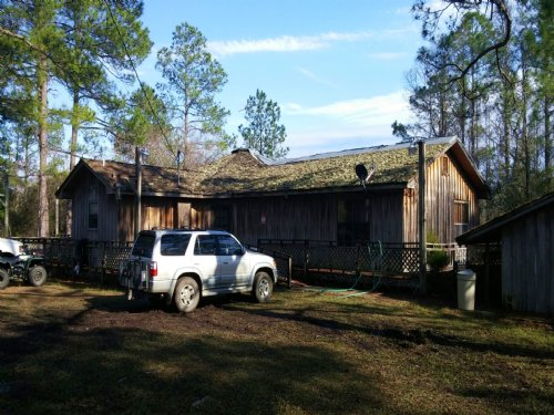 Pine Log 631a : Ebro : Washington County : Florida