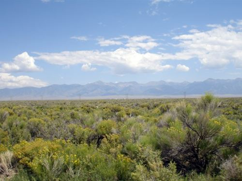 4059741 - 160 Acres Of Peace And Qu : Saguache : Colorado