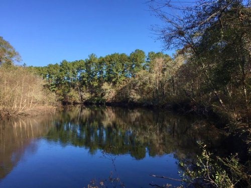 7395 Ac Waterfront And Timberland : Nahunta : Brantley County : Georgia