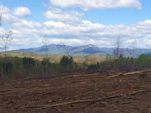 Marietta Tract : Marietta : Greenville County : South Carolina