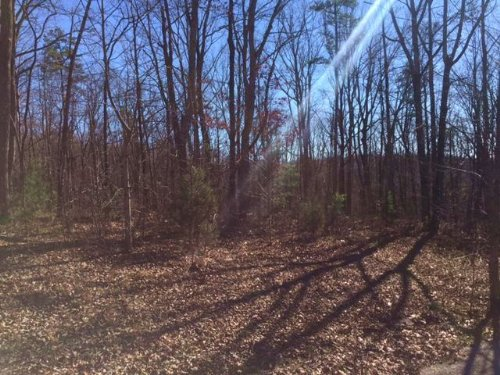 6.45+/- Acres With Creek : Dunlap : Sequatchie County : Tennessee