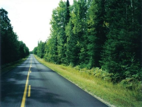 49.9 Acres Land For Sale : Connor : Aroostook County : Maine