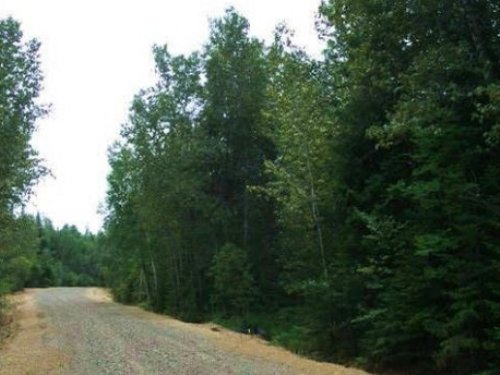 102 Acres Land For Sale : Chapman : Aroostook County : Maine