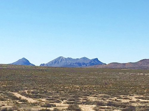 40 Acres, Easy Access : Study Butte : Brewster County : Texas