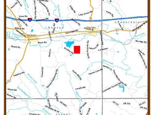 Hidden Gem : Chunky : Newton County : Mississippi