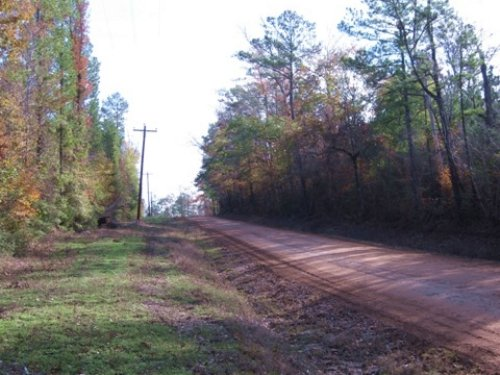 Hill Parcel On Co Rd 2590 : Chester : Tyler County : Texas