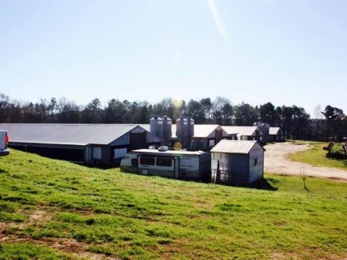 Broiler Farm On 25 Acres Mize Ms Sm : Mize : Smith County : Mississippi