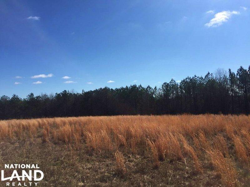 Indian Creek Farm & Recreation : Billingsley : Autauga County : Alabama