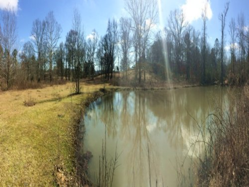14 Acres - Commercial : Odenville : St. Clair County : Alabama