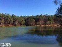 Winfield Recreation & Timber Land : Winfield : Fayette County : Alabama