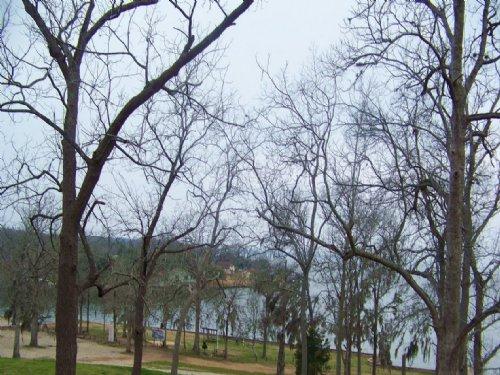 Cheap Land : Coldspring : San Jacinto County : Texas