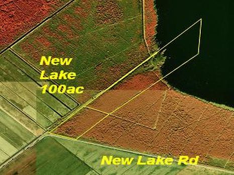 Windly New Lake Tract :  : Hyde County : North Carolina