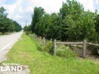 Lexington Residential Land : Lexington : Lexington County : South Carolina