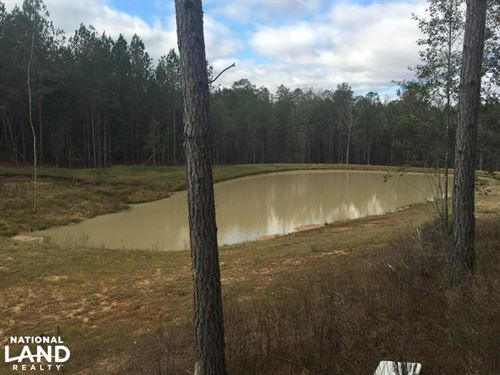 The Dunbar Creek Tract : Millry : Washington County : Alabama