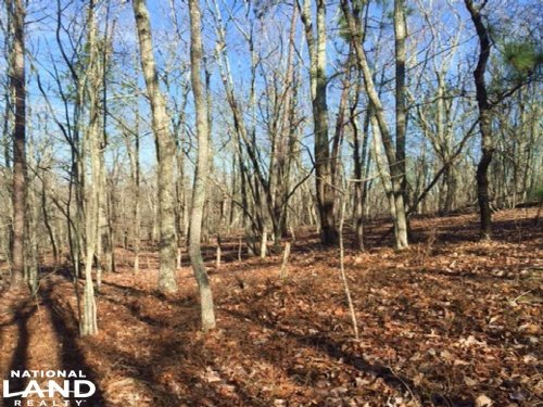 Talladega Recreation & Homesite : Talladega County : Alabama