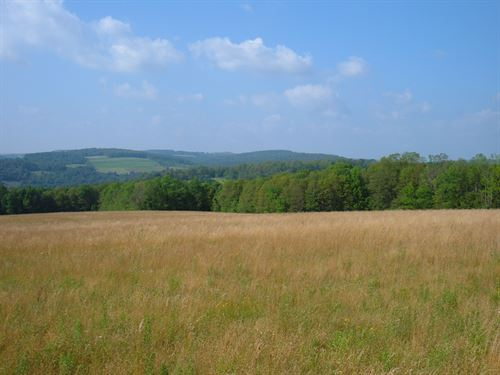 Farmland With Stream & Views 46 Ac : Cortlandville : Cortland County : New York