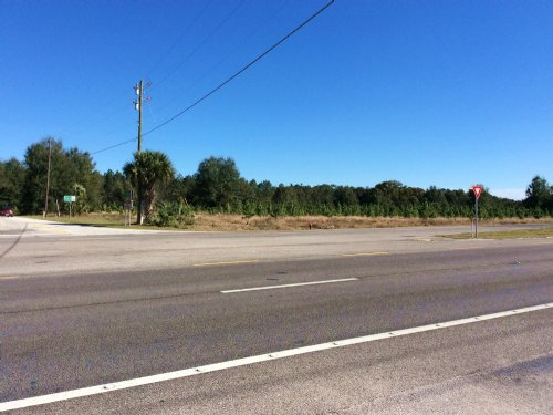 7 Ac Vacant Land W/ Future Dev : Mount Dora : Lake County : Florida