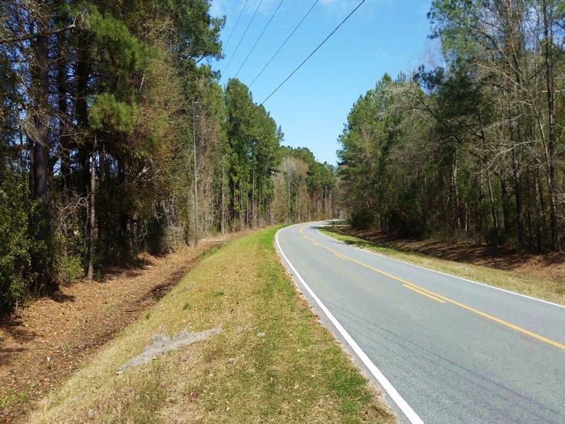 Acreage With Many Possibilities : Brunswick : Glynn County : Georgia