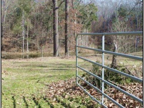 38 Acres In Yazoo County : Yazoo City : Yazoo County : Mississippi