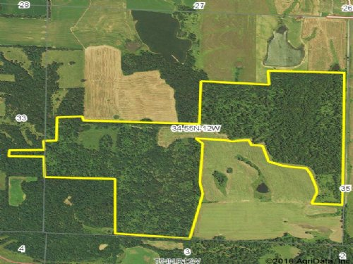 245 Acres; County Road 606 : Madison : Monroe County : Missouri