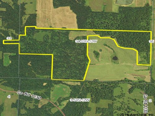 176 Acres; County Road 606 : Madison : Monroe County : Missouri