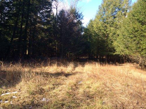 Southern Tier Sportsmans Dream : Sherburne : Chenango County : New York