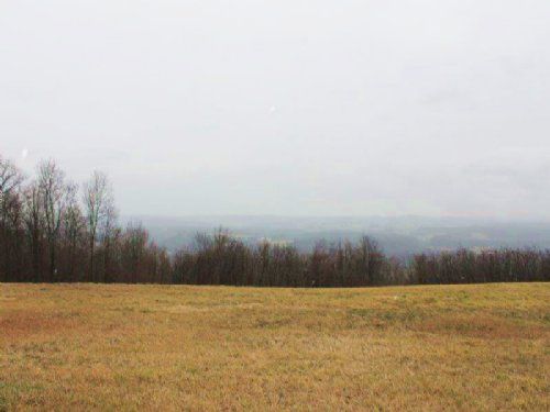 Land In The Mohawk Valley 95 Acres : Minden : Montgomery County : New York