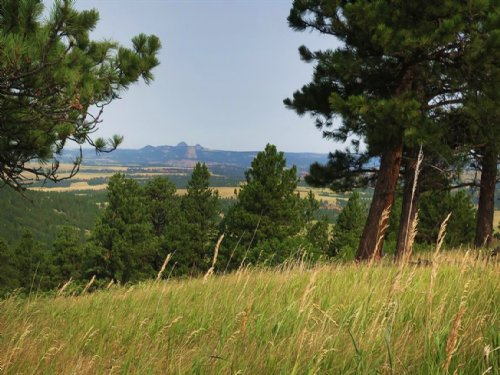 Bear Lodge Ranch : Sundance : Crook County : Wyoming