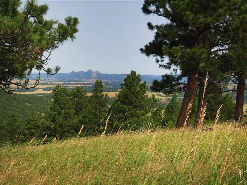 Bear Lodge Ranch : Sundance : Crook County : Wyoming