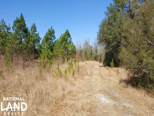 Waterfront Recreational Land : Leland : Brunswick County : North Carolina