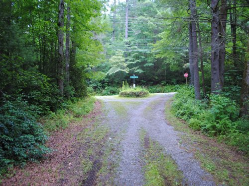 Beaumont Drive Lot #4 : Cedar Mountain : Transylvania County : North Carolina