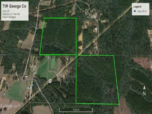 Timberland Investment Land George C : Wiggins : George County : Mississippi