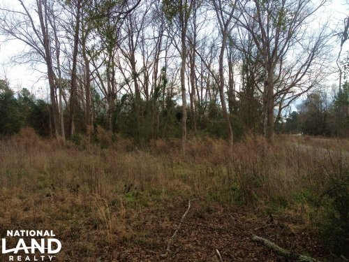 Brunson Residential Lot : Brunson : Hampton County : South Carolina