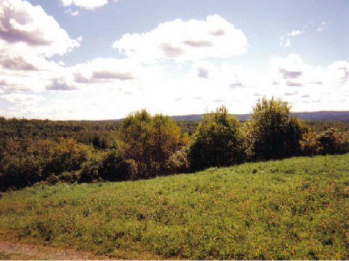 64+/- Acres For Sale In Van Buren : Van Buren : Aroostook County : Maine