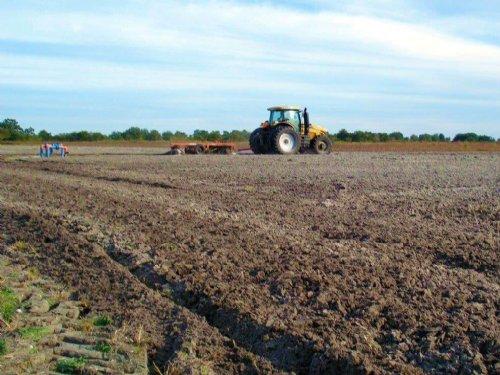 Kibler Farm : Parrish : Manatee County : Florida
