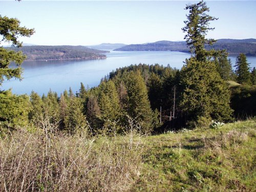 Stunning Lake Coeur D'alene Acreage : Coeur d'Alene : Kootenai County : Idaho