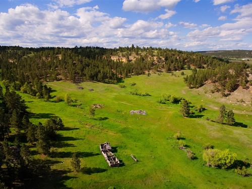 Kara Creek Divide Ranch : Sundance : Crook County : Wyoming