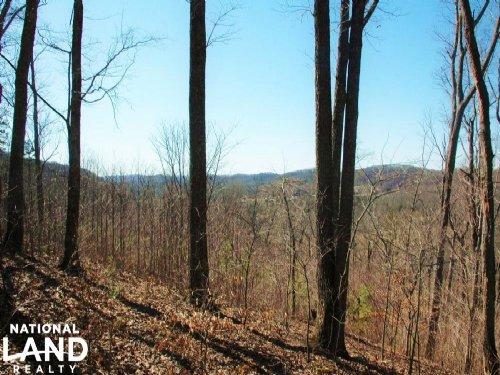 Single Family Acreage : Farragut : Knox County : Tennessee