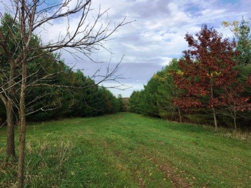 Solitude & Beauty 140 Acres : Fennimore : Grant County : Wisconsin
