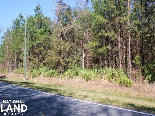 Private Homesite : Woodbine : Camden County : Georgia