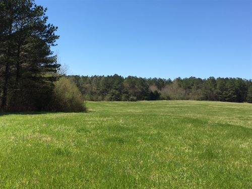 309 Acres Hwy 100 / Tallapoosa Hwy : Cedartown : Polk County : Georgia
