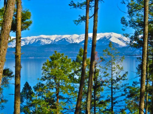 Angel Cove Escape : Lakeside : Flathead County : Montana