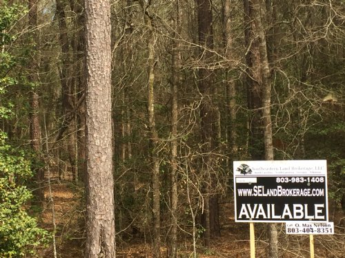 5 Acres Valley Ridge Road, Gaston : Gaston : Calhoun County : South Carolina