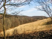 Price Reduced 255+/- Acres : Cowansville : Armstrong County : Pennsylvania