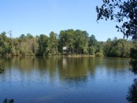 Turkey Creek Farms : Fort Valley : Peach County : Georgia