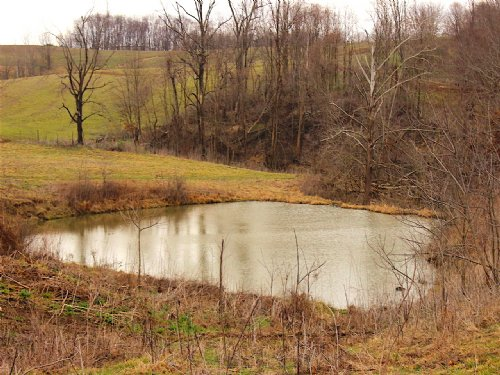 Sr 146 - 87 Acres : Nasport : Licking County : Ohio