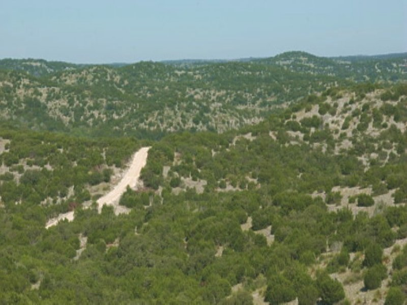 Hill Country Hunting : Rocksprings : Edwards County : Texas