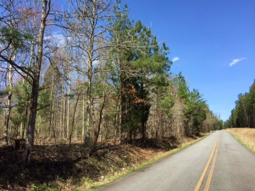 27.494 +/- Acres, Mixed Woods : Adairsville : Bartow County : Georgia